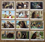 Cartoline marcellino pane e vino 1957