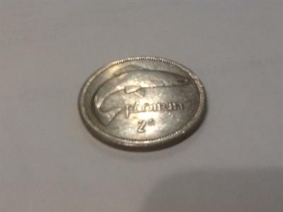 Moneta florin irlandese